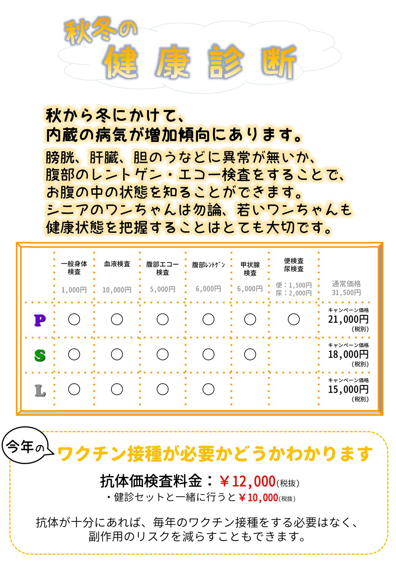 2020秋冬web
